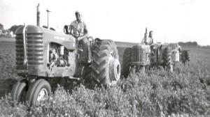 3 plow 1960